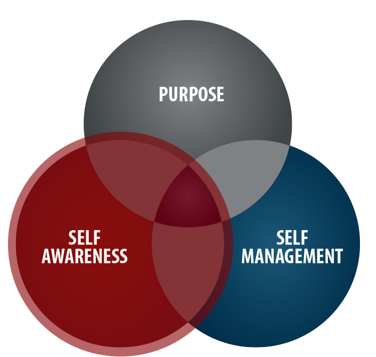 Self Awareness Venn Diagram